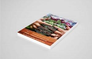 Print Flyer Markedføring DinOptimering